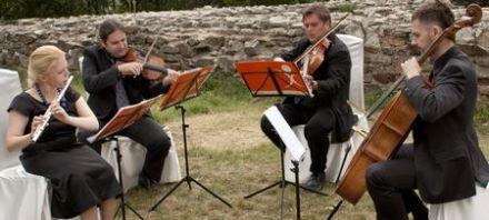 Kwartet Demi Sec - oprawa muzyczna ślubu i innych uroczystości - Gliwice - śląskie